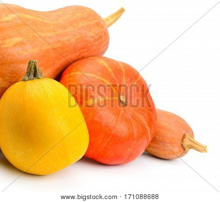 A ripe pumpkins isolated on white background