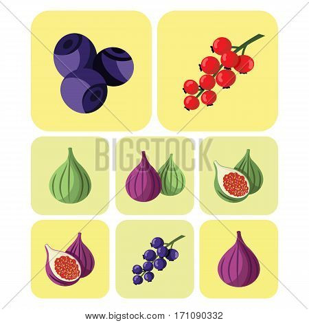 Colortul tasty fruits and berries icons set
