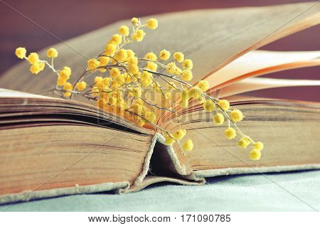Spring background - old book with yellow mimosa flowers. Retro tones processing, spring background with old book and spring mimosa flowers. Spring background