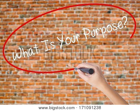 Woman Hand Writing What Is Your Purpose?  With Black Marker On Visual Screen