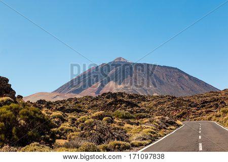 Teide National Park in Tenerife Canary Islands Spain