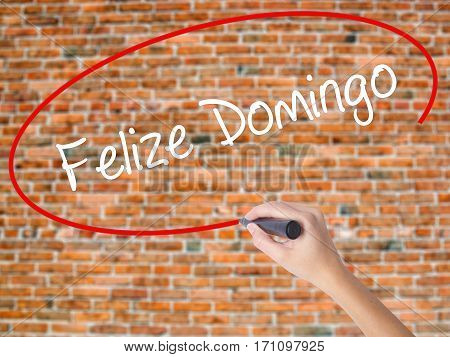 Woman Hand Writing Felize Domingo (happy Sunday In Spanish/portuguese)  With Black Marker On Visual