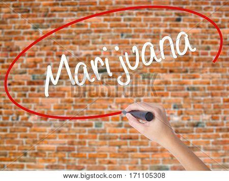 Woman Hand Writing Marijuana With Black Marker On Visual Screen