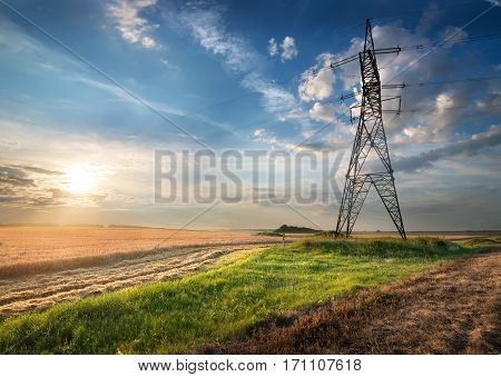 Electric pole in the autumn field at sunrise
