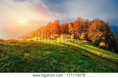 Fantastic sunny hills glowing by sunlight. Carpathian, Ukraine Europe