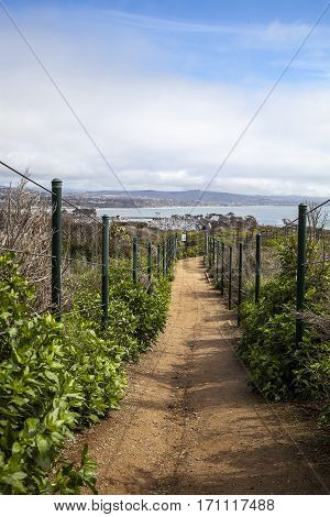 Hiking Trail Above Dana Point Harbor