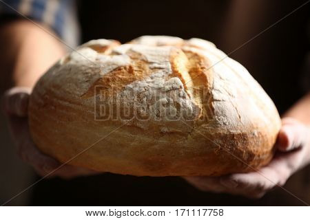 Male hands holding freshly baked wheaten bread, closeup