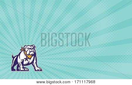 Business card showing Illustration of a bulldog mongrel mascot sheriff crouching viewed from front set on sunburst background done in retro style.