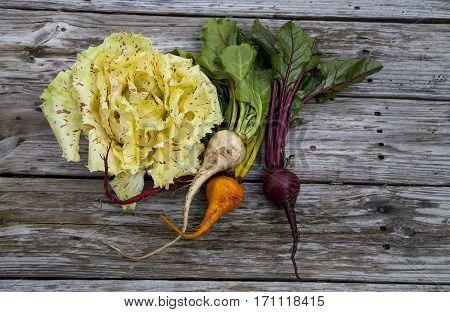 Beets And Castelfranco Radicchio Lettuce