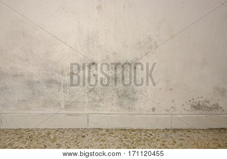 Mould And Moisture Build Up On A Wall