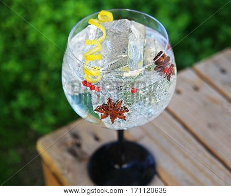 Gin Tonic with Lemon Zest, Star Anis and Pink Pepper