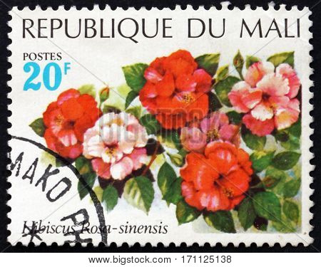 MALI - CIRCA 1971: a stamp printed in Mali shows Chinese hibiscus Hibiscus rosa-sinensis a flowering plant circa 1971