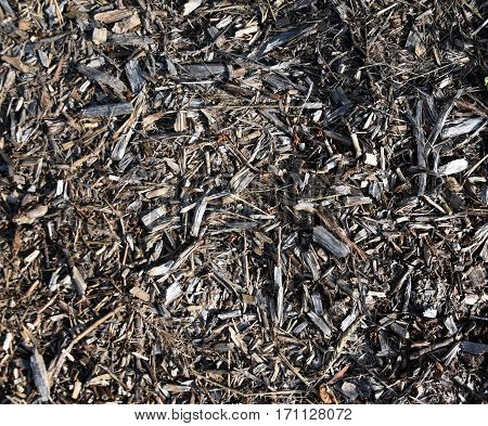 Bark leaves and wood chippings mulch as an abstract coarse background texture.