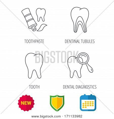 Tooth, dental diagnostics and toothpaste icons. Dentinal tubules linear sign. Shield protection, calendar and new tag web icons. Vector poster
