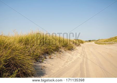 A road behind the dunes leading to the local beach