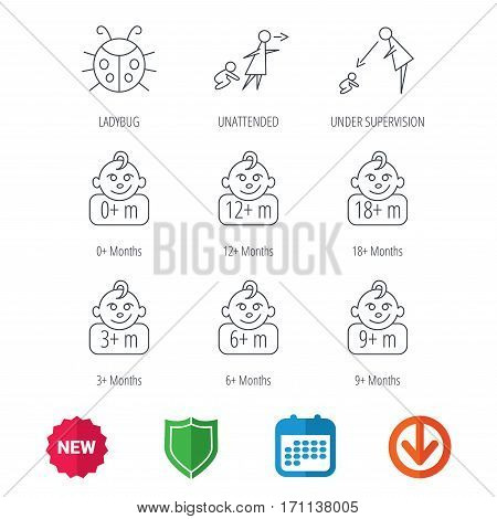 Infant child, ladybug and toddler baby icons. 0-18 months child linear signs. Unattended, parents supervision icons. New tag, shield and calendar web icons. Download arrow. Vector