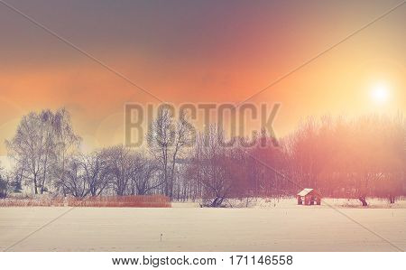 Winter landscape at sunset. Yellow-red sky. The bushes and trees on a frozen lake in winter. Yellow tall grass and gray trees. Wooden cottage on the shore of a frozen lake. Background winter trip to the lake.
