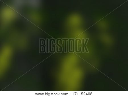 Abstract, abstraction background, art background, green and yellow abstract. Artistic abstraction. Green background. Transparent background.