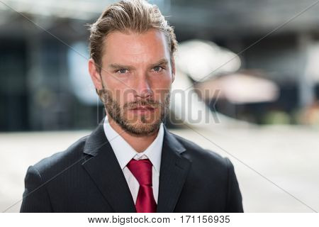 Portrait of a young handsome businessman
