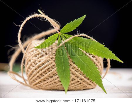 Macro detail of hemp fiber twine and cannabis leaf - marijuana farming concept