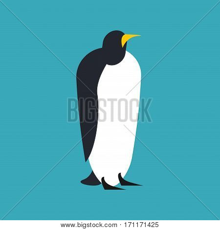 Penguin Isolated. Animal North Pole. Bird Antarctica And Arctic