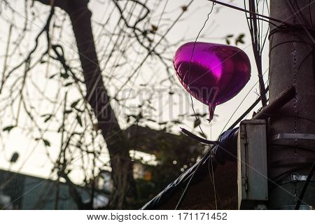 the pink heart balloon old the street