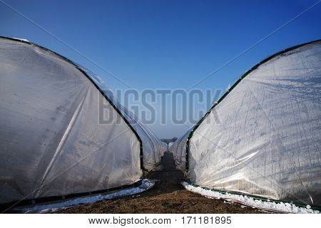 View between two greenhouse tunnels from polythene plastic on an agricultural field against the blue sky