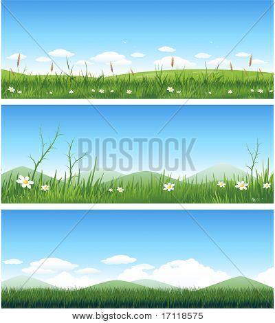 Three different summer landscapes