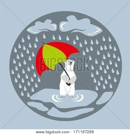Polar bear wit umbrella under the rain