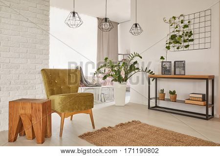 Apartment Designed With Earthy Colours