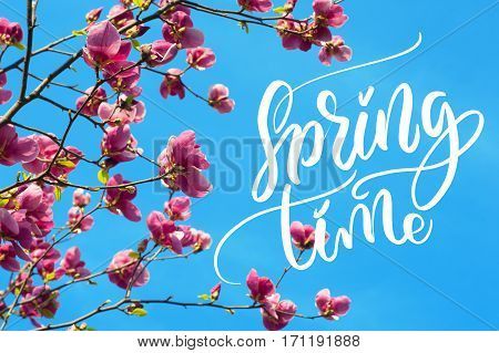 image of blossoming magnolia flowers in spring time and words Spring time. Calligraphy lettering.