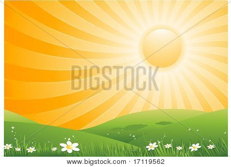 Hot summer sun background