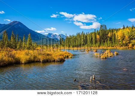 Beautiful lakes Vermilion in Banff. Canadian province of Alberta, the Rocky Mountains. Magnificent sunny day. Concept of active tourism