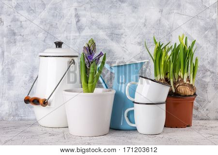 Two white enamel mugs blue jar white can and spring flowers in pot on light background