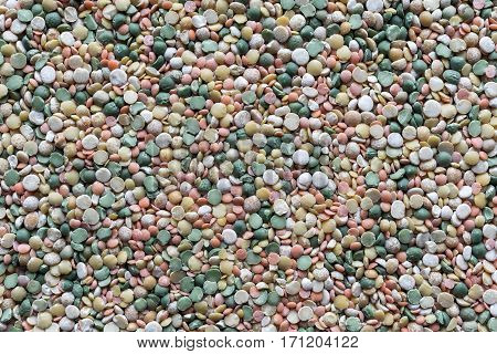 background and texture of dried shredded peas of different motley color