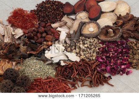 Traditional chinese herbs used in alternative herbal medicine.