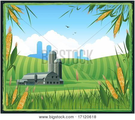 Farm harvest background