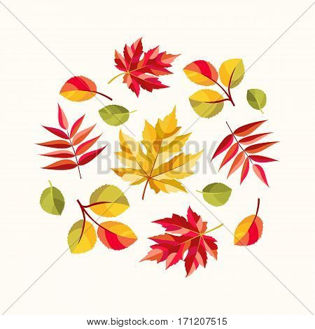 Autumn composition with colorful leaves of maple, rowan and aspen. Vector illustration.