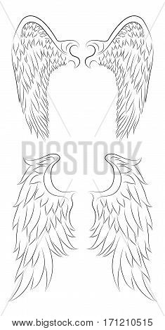 Set of different contour drawing of an angel wings. Vector element for your creativity