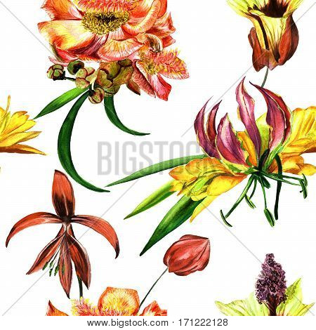 Tropical Hawaii leaves and flowers pattern in a watercolor style isolated. Aquarelle wild flower for background, texture, wrapper pattern, frame or border.