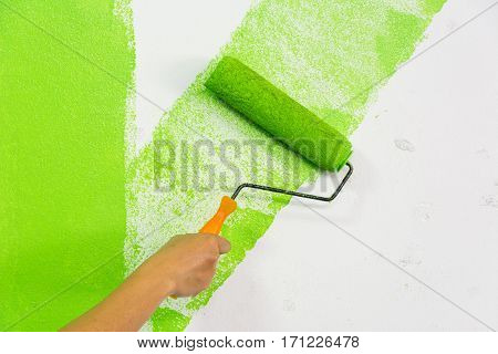Man hand with roller brush painting green color on wall