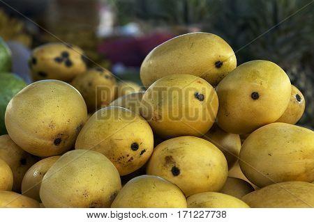 Fresh mango fruits in street market, Bohol island, Philippines
