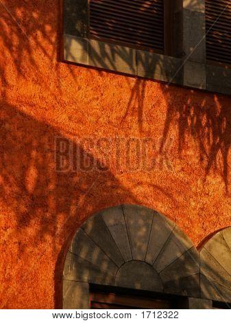 Mexican Fire Orange Wallscape No. 4