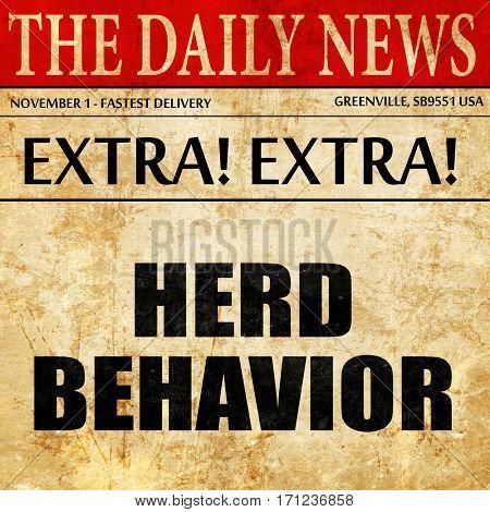herd behavior, article text in newspaper