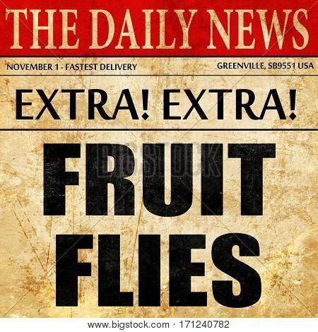 fruit flies, article text in newspaper