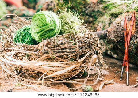 Wild nest of green yarn balls. Wood square needles next to mossed log. Concept of eco friendly knitting goods. Selective focus