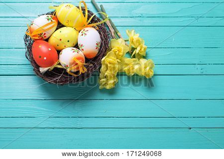 Easter eggs in nest and bright spring flowers on turquoise wooden background. Easter background for design. Selective focus. Place for text.