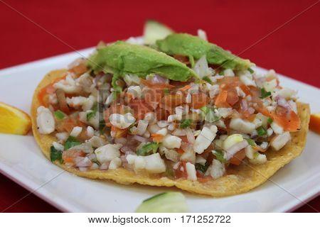 Ceviche Tostada Seafood Avocado Aphrodisiac, Mexican Style
