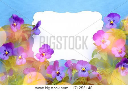 Spring flower with blank card