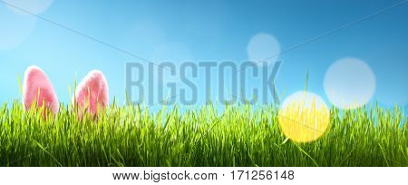 Easter bunny ears in grass,copy space for your text